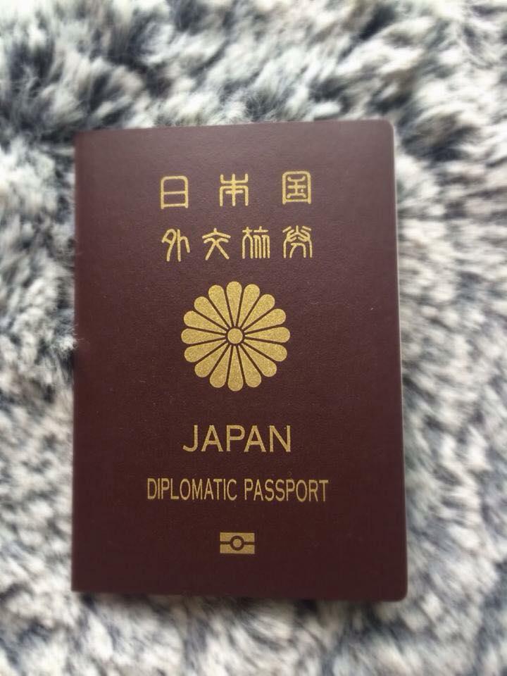 【貴重】茶色のパスポート
