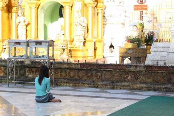 ミャンマーのスエダゴン・バゴダにてお祈りをする仏教徒の女性