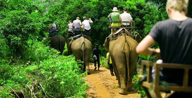 thai-tourist
